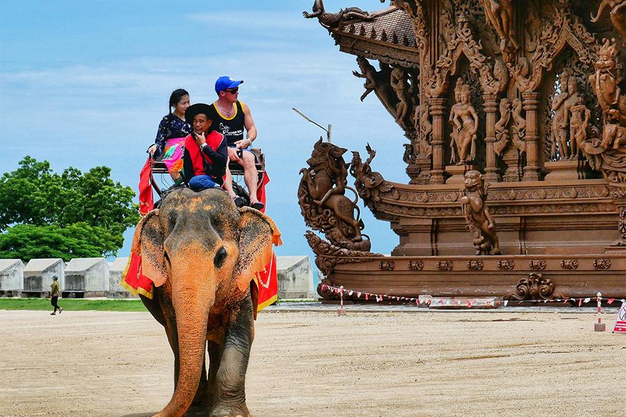 78 elefantes libres